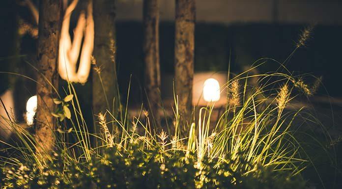 Oświetlenie ogrodu – czym się kierować podczas wyboru?