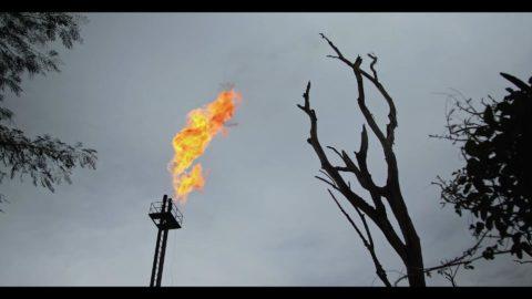 Ewa Ewart o wydobyciu ropy w Amazonii